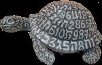 Number Turtle Bev Dunbar Maths Matters