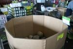 Octagonal Pumpkin Market Storage Box Bev Dunbar Maths Matters