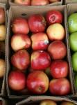 Pack and Stack Apples Bev Dunbar Maths Matters