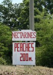 Peaches 200 m Road Sign Bev Dunbar Maths Matters