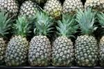 Pineapples with hexagonal patterns Bev Dunbar Maths Matters