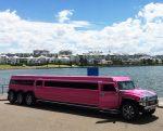 pink-limousine-5-tonnes-MASS-bev-dunbar-maths-matters