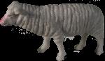 Plastic Toy Sheep - farm animal Bev Dunbar Maths Matters