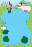 Pond - John Duffield duffield-design