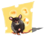 Position - mouse - in front of cheese - location - John Duffield duffield-design