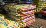 Potting Mix - 2 for $8.50 Bev Dunbar Maths Matters