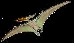Pterodactyl  Dinosaur John Duffield duffield-design