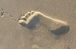Right Footprint (Position F/1/2) Bev Dunbar Maths Matters
