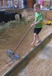 Riley rakes 2D parallel lines Bev Dunbar Maths Matters
