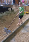 Riley rakes parallel lines Bev Dunbar Maths Matters