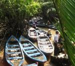 River boats Vietnam Bev Dunbar Maths Matters
