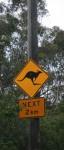 Road Sign Kangaroos next 2 km Bev Dunbar Maths Matters