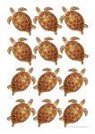Sea Creatures Turtle Counters Bev Dunbar Maths Matters