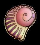 Shell 2 - John Duffield duffield-design