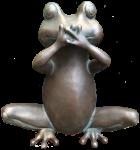 Silent bronze frog - amphibian - Bev Dunbar Maths Matters copy