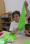 Sorting 2D green triangles Bev Dunbar Maths Matters