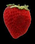 Strawberry Bev Dunbar Maths Matters