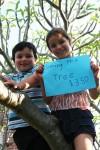 Street Shop Climbing Tree $3.50 Bev Dunbar Maths Matters