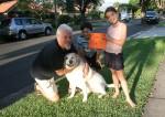 Street Shop Pat the dog $2.50 Bev Dunbar Maths Matters