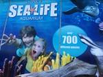 Sydney Aquarium 700 species Bev Dunbar Maths Matters