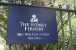 Sydney Fernery Opening Times Bev Dunbar Maths Matters