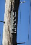 Telegraph Pole 17736 Bev Dunbar Maths Matters