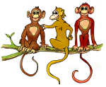 Three Monkeys - Brown Yellow and Red - wild animals