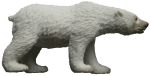 Toy polar bear - wild animals - Bev Dunbar Maths Matters