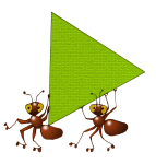 Triangle Ants - Equilateral - John Duffield duffield-design