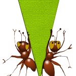 Triangle Ants - Icosceles - John Duffield duffield-design