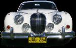 White Jaguar Car - front - Bev Dunbar Maths Matters