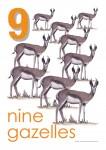 Wild Animals 1 to 10 Posters Bev Dunbar Maths Matters