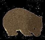 Wombat John Duffield duffield-design