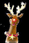 Xmas Reindeer 4  - John Duffield duffield-design