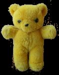 Yellow Bear Bev Dunbar Maths Matters
