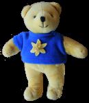 Yellow & Blue Bear  Bev Dunbar Maths Matters