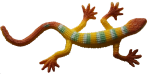 Yellow striped lizard - toys - Bev Dunbar Maths Matters