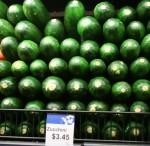Zucchini $3.45 per kilo Bev Dunbar Maths Matters
