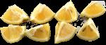 Lemon Eighths Bev Dunbar Maths Matters