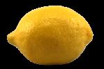 Lemon Bev Dunbar Maths Matters