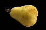 pear Bev Dunbar Maths Matters